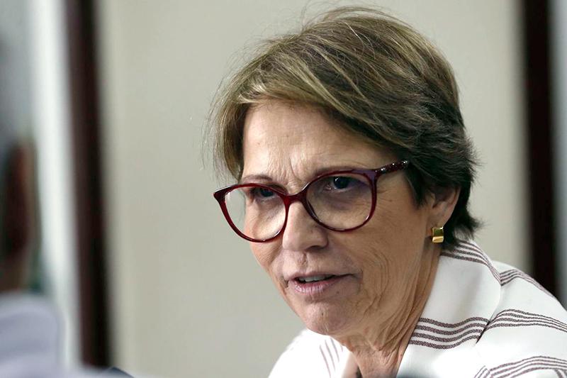 A ministra Tereza Cristina, da Agricultura (Foto: Antonio Cruz / Agência Brasil)